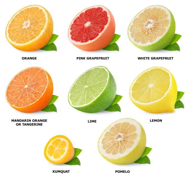 Помело. Чем хорош этот экзотический фрукт?