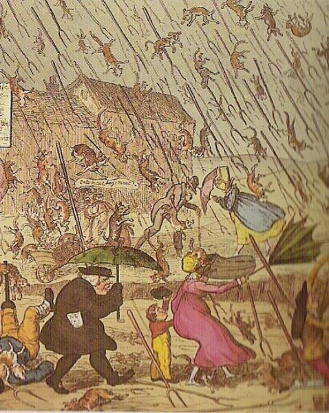 Английская карикатура XIX века, где идёт дождь из вил, собак и котов