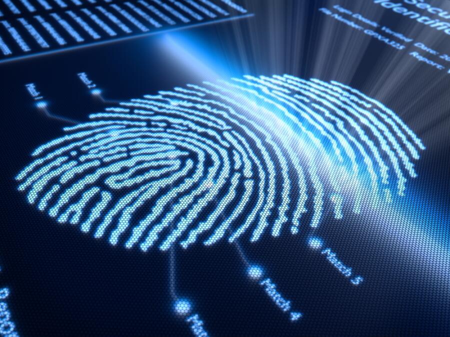 Отпечатки пальцев в древности, или Как родилась дактилоскопия?