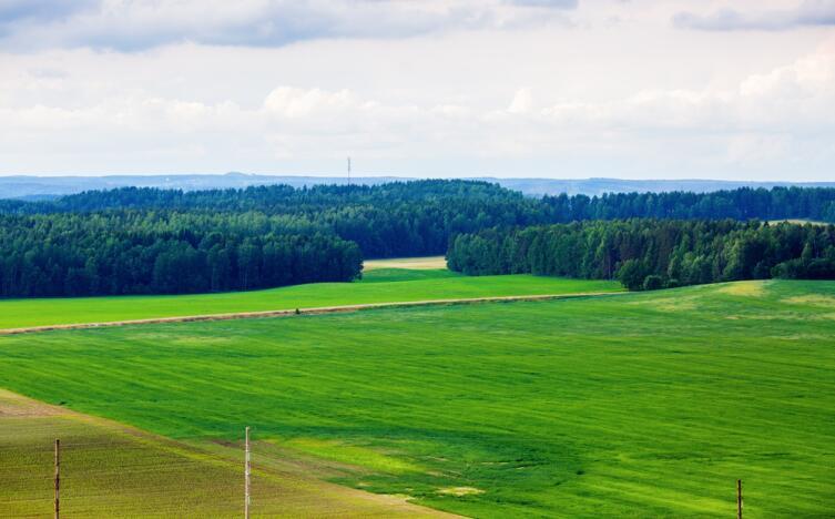 Белорусский пейзаж, Минская область