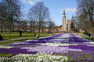 Как выглядит счастье по-датски?