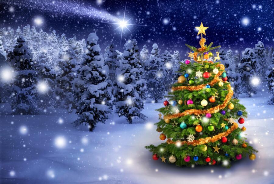 Как придумывали и как запрещали рождественскую елку?