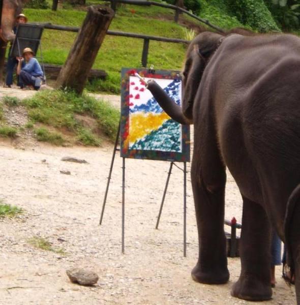 Рисующий слон