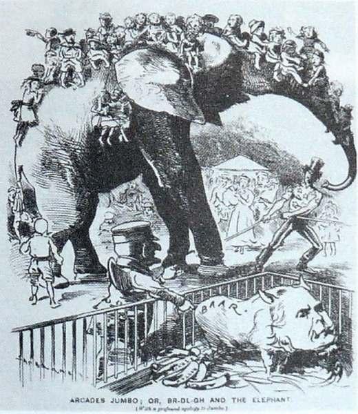 Карикатура из журнала «Панч» 1882 г.