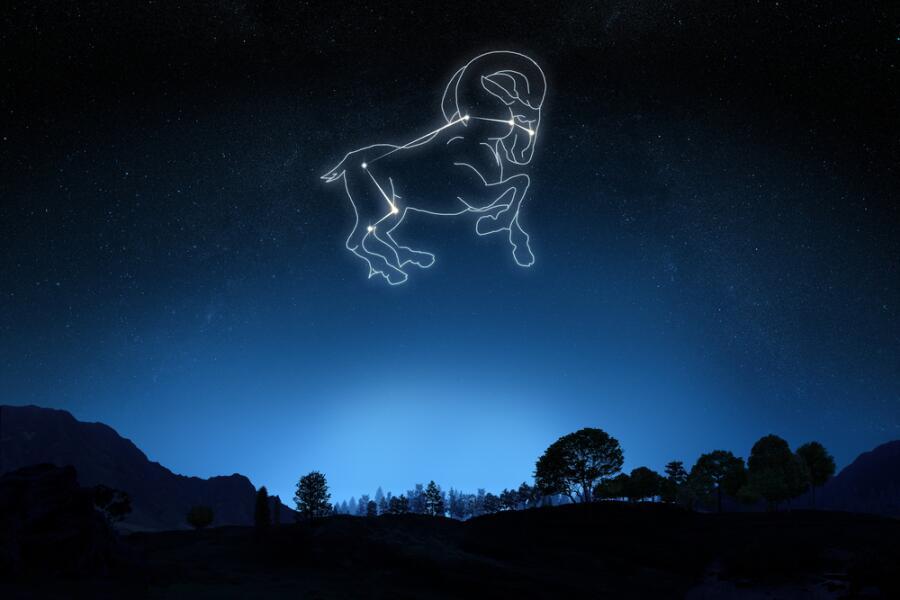 гороскопы что любят овны