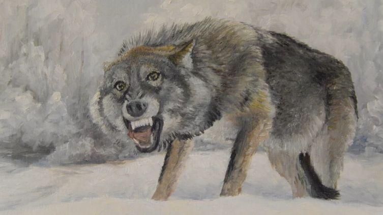 Н. В. Омельченко, «Одинокий волк», 2017 г.