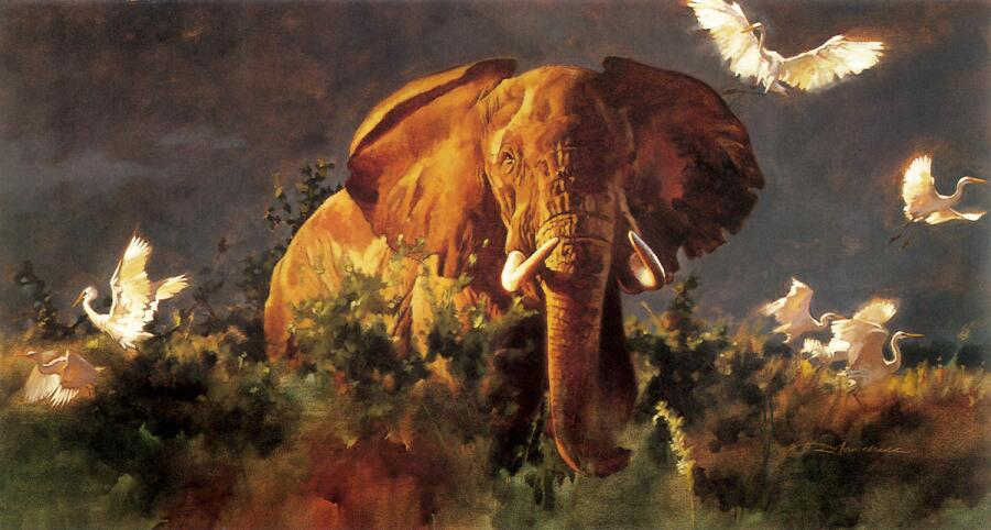 Грегори Манчесс, «Слон»