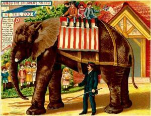 Слонопедия–9. Каких слонов в США любили, а каких... казнили?