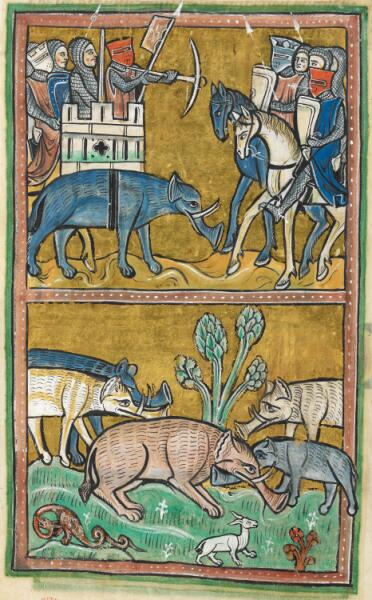 Слонопедия - 8. Как слон снова пришёл в Европу?