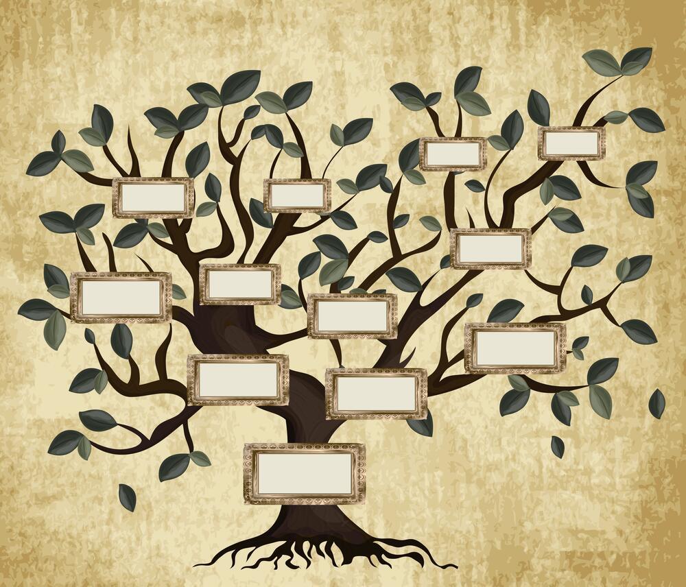 Семейной древо скачать программу установочная программа оперы скачать бесплатно