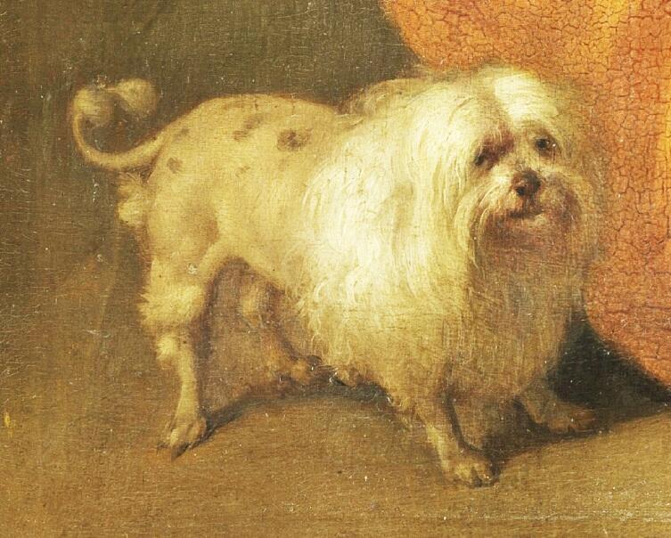 Габриэль Метсю, «Игроки в карты», фрагмент «Собачка»