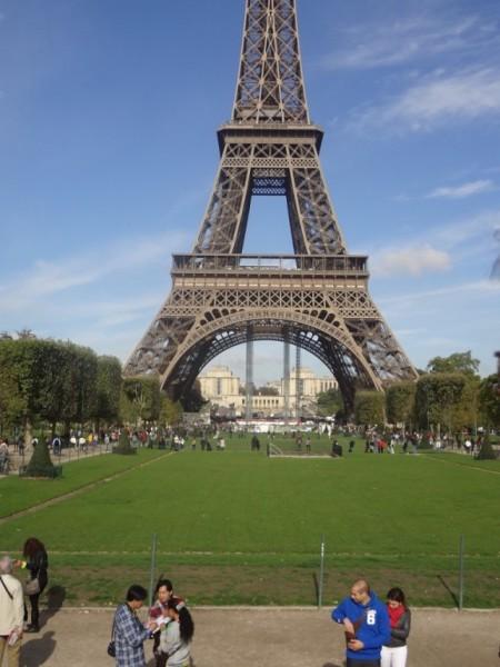 Какие фиалки красивее - французские или горные ?
