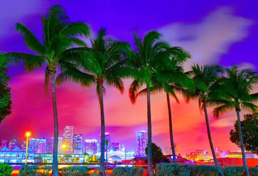 Флорида. Какие символы присущи этому штату США?