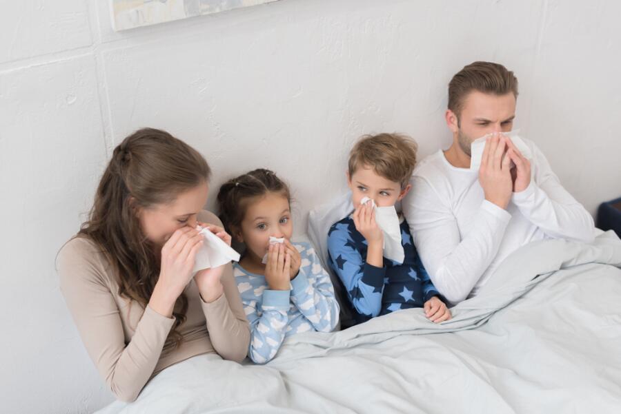 Почему эпидемии гриппа начинаются и почему заканчиваются?