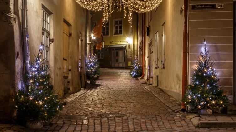 Раннее утро в рождественском Таллине