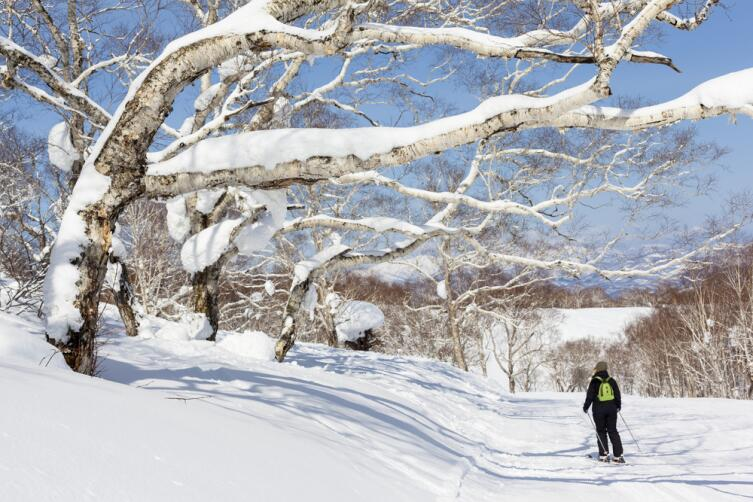 Через Сибирь на лыжах
