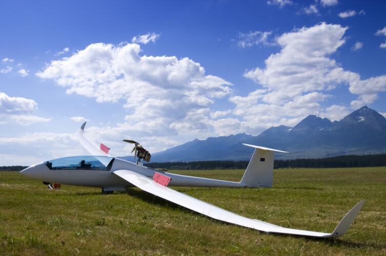 Как полетать без мотора? Легко!
