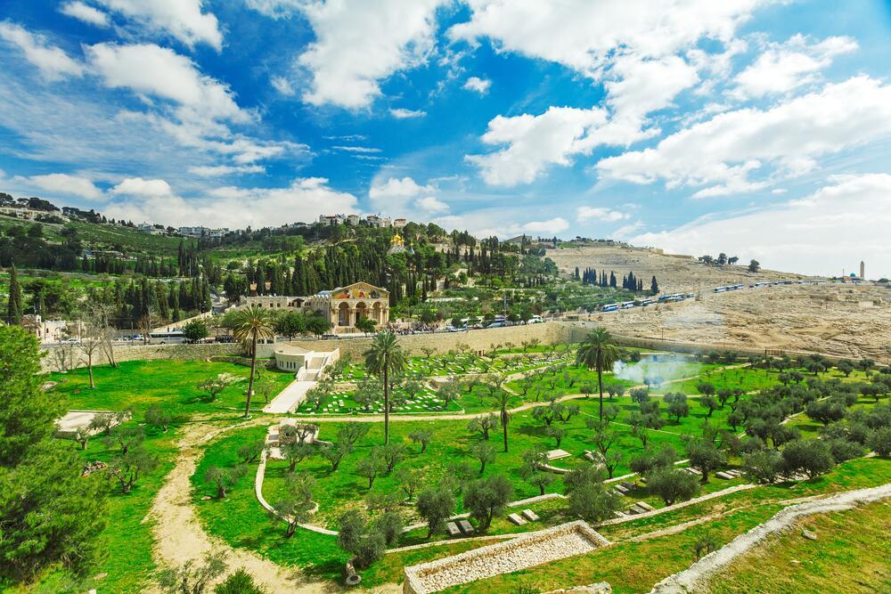 Как весна приходит в Израиль?