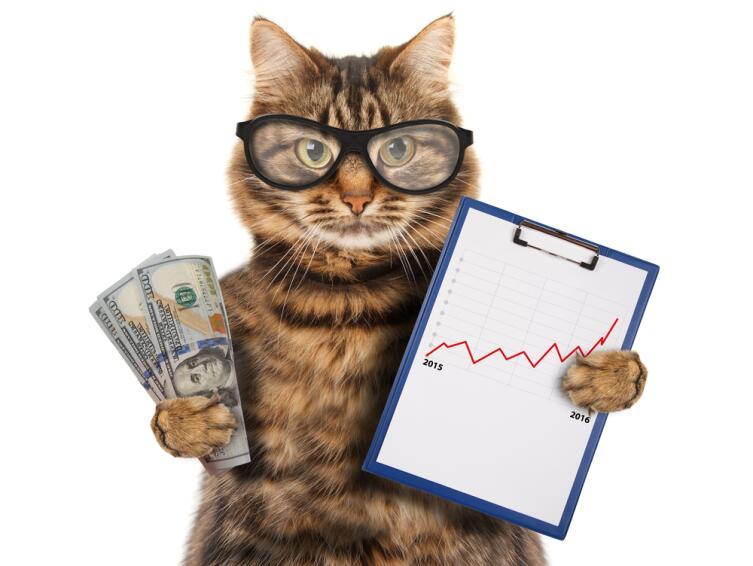 Секреты богатства от гарвардской бизнес-школы. Кто вы - крот, курица, обезьяна или кот?