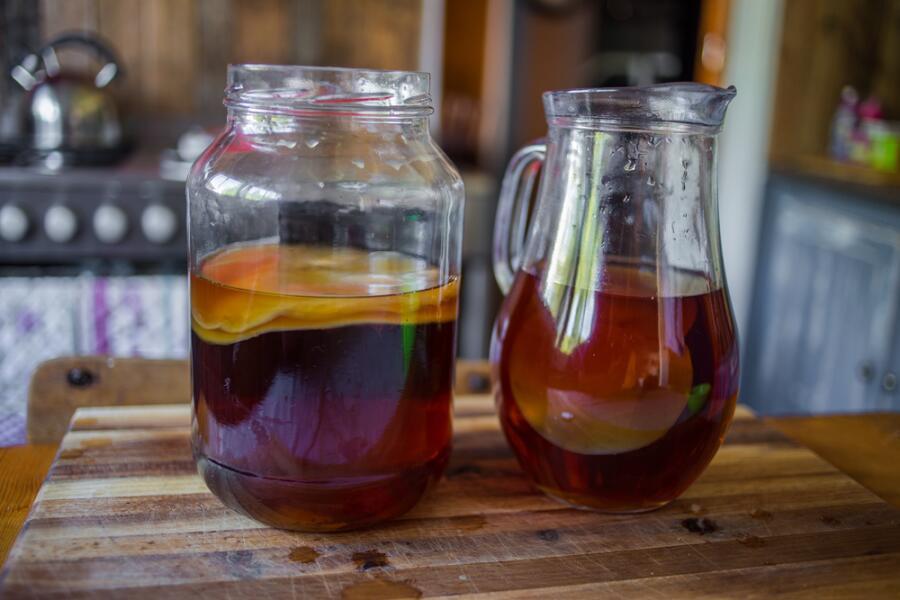 Как вырастить чайный гриб с нуля?