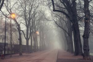 Как сон беду предсказал? Сатирический рассказ