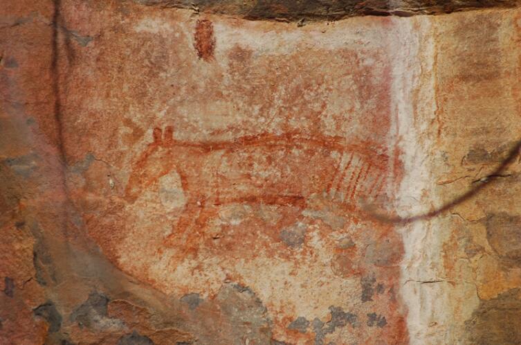 Наскальный рисунок сумчатого волка в местности Убирр