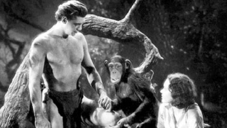Послевоенное детство. Помните ли вы фильм «Тарзан»?