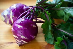 Капуста кольраби является одной из самых скороспелых огородных культур