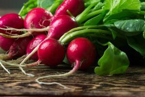 Как вырастить вкусный редис?