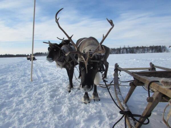 Как живется на Ямале?