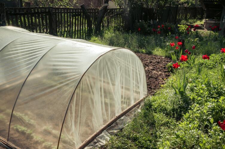 Как применять укрывные материалы для выращивания растений на даче?