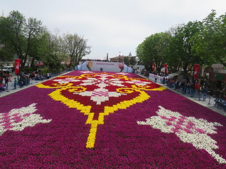 Традиционный ковер из тюльпанов на площади Султанахмет. Здесь использовано 565 тысяч тюльпанов, площадь - 1734 кв.м
