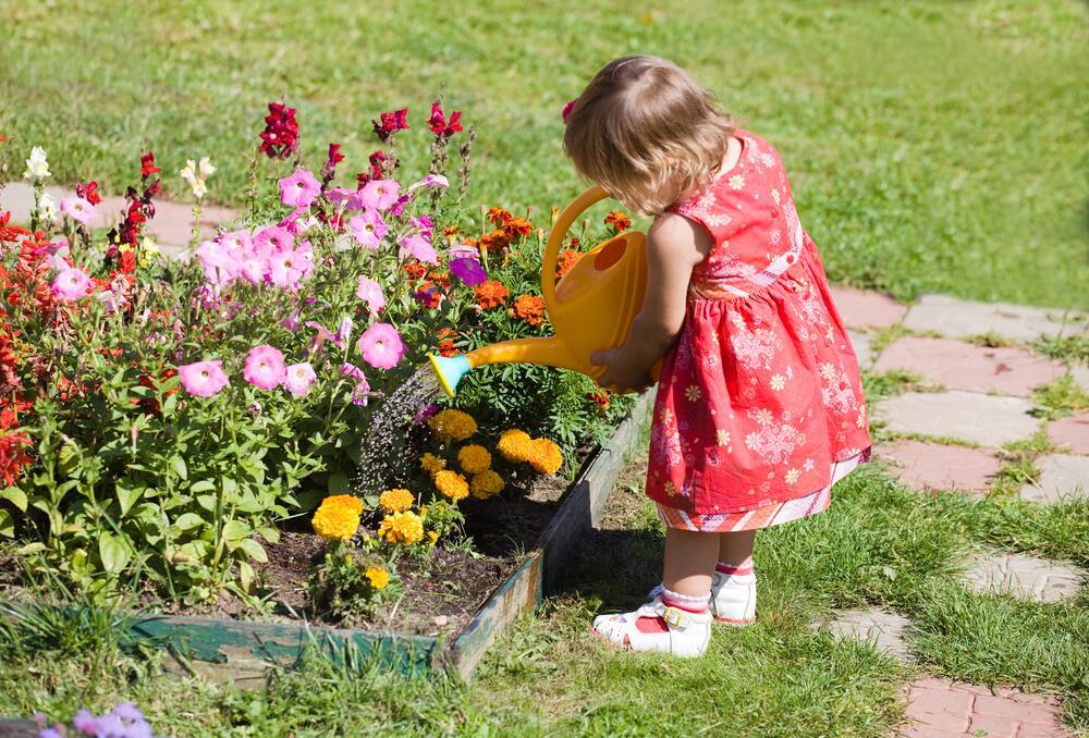 Дети поливают растения картинки