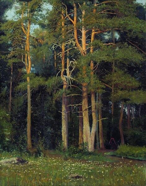 И. И. Шишкин, «Сосновый бор у Лигова»,  1895 год