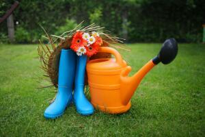Прополка и урожай - прежде всего. Но глазам и душе недостаточно ботвы морковки...