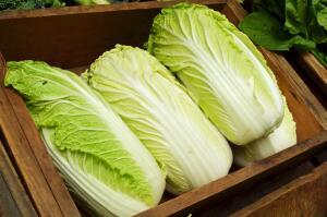 Пекинская капуста - «палочка-выручалочка» для любого фермера и дачника