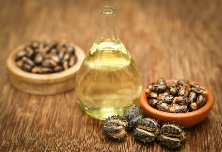 Семена , плоды клещевины и косторовое масло