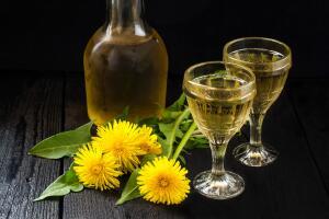 Можно ли приготовить вино из одуванчиков?