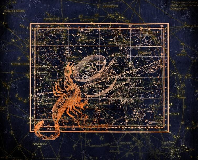 Скорпион и Весы