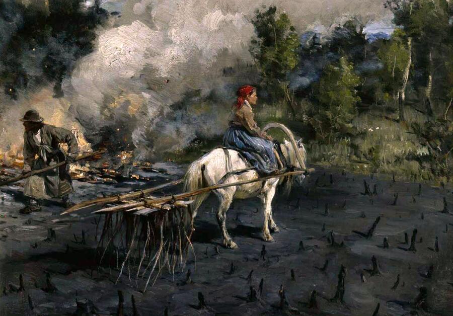 И. М. Прянишникова, «Приготовление почвы для посева льна в Вологодской губернии», 1887–1890 гг.