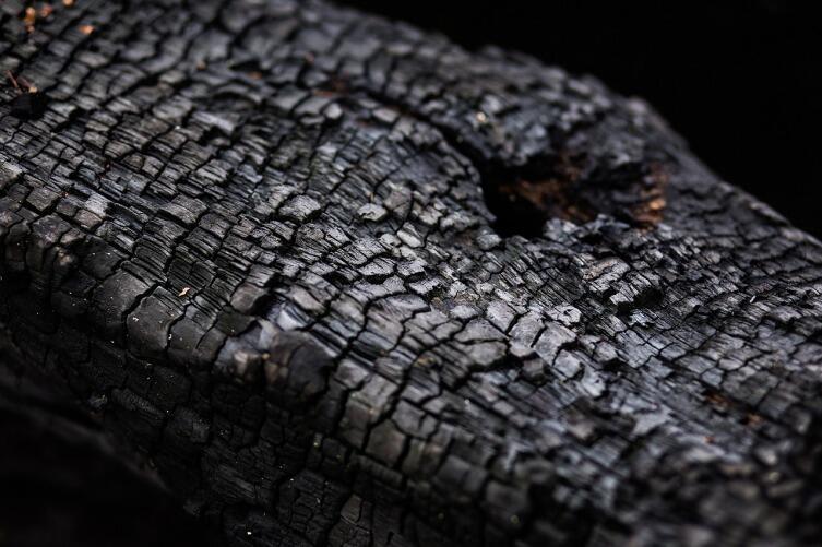 Зола, пепел, сажа, копоть, уголь - в чем их отличие?