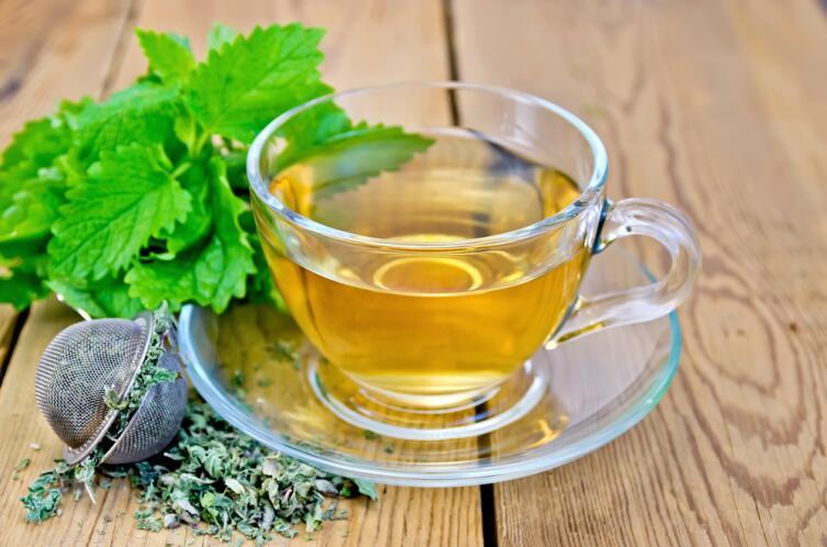Можно ли беременным чай с мелиссой?