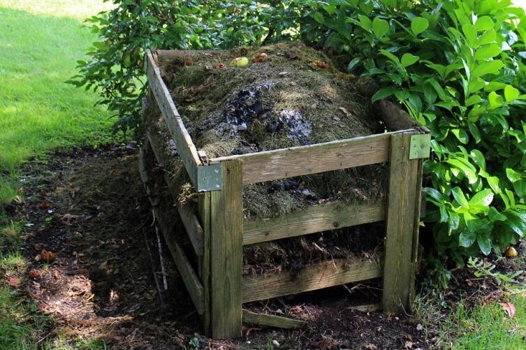 Что выбрать - компостные кучи, компостные ямы или компостные грядки?
