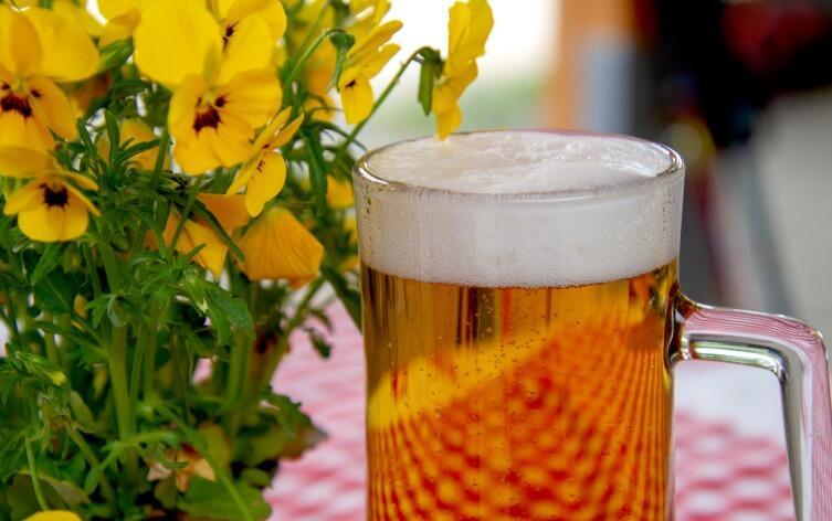 «Харбинское пиво» - русские корни? Любителям пива и путешествий