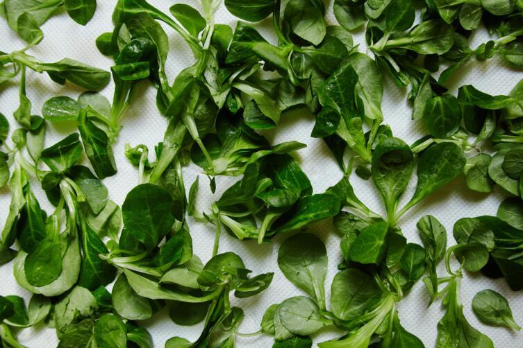 Цицмат или кресс-салат
