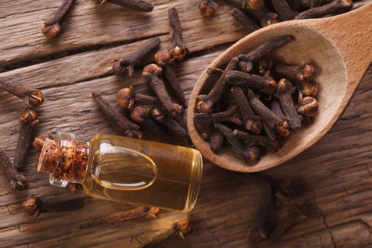Насекомые не любят запах гвоздичного масла