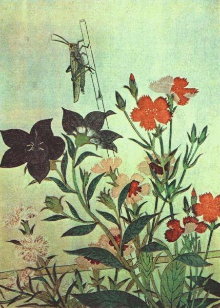 Китагава Утамаро, «Рисовая саранча, красная стрекоза, гвоздики, китайские колокольчики», 1788 г.