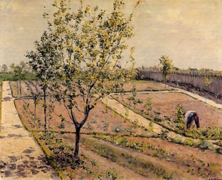 Гюстав Кайботт, «Огород в Петит Женвильер», 1882 г.