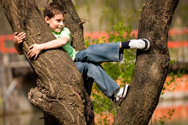 Как обеспечить ребенку безопасность на даче?