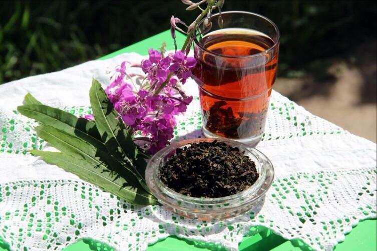 Иван чай: какими полезными свойствами обладает и как правильно его заваривать?